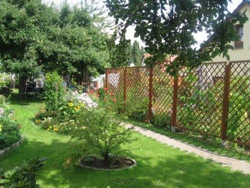 Garten_Ferienhaus.JPG